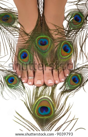 Pedicured feet and beautiful colorful peacock feathers