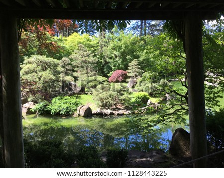 Peeking out from a shaded pergola at the beauty of the calm pond with reflections of various shades of green, blue and pink from the shrubbery surrounding the pond. #1128443225