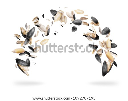 Peeled sunflower seeds are frozen in the air, isolated on white background  #1092707195