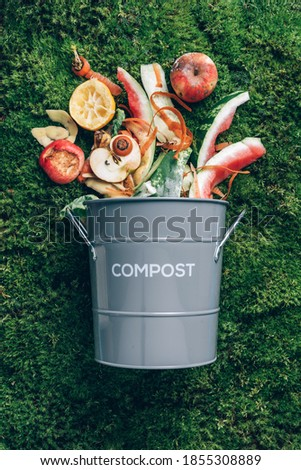 Peeled vegetables in white compost bin on green grass, moss background. Trash bin for composting with leftover from kitchen. Top view. Recycling scarps concept. Sustainable and zero waste lifestyle. Foto d'archivio ©