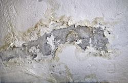 Peeling paint, indicating damp on the bathroom wall - water Leaks