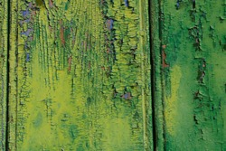 Peeling paint of lime green with royal blue. The green on top is all cracked, faded and peeling. A beautiful rough colourful retro abstract image and texture.