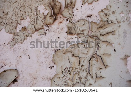 Peeling paint on a plaster wall surface. it is old walls and surfaces are deteriorating. #1510260641