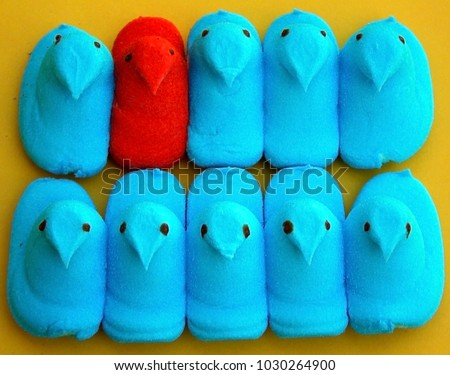 Peep Chick candy one orange and the rest blue in a row to show diversity and standing out on a yellow background