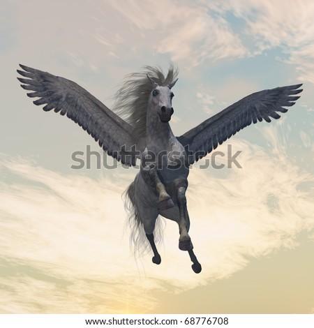 Animals - Pegasus
