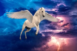Pegasus winged legendary white horse flying with spread wings in stormy sky