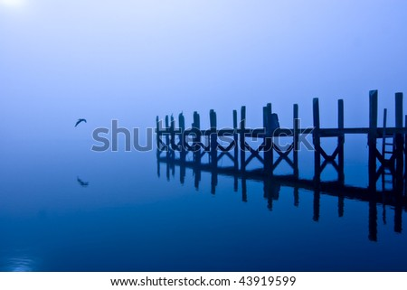 pelican flying from dock at night, moody shot - stock photo