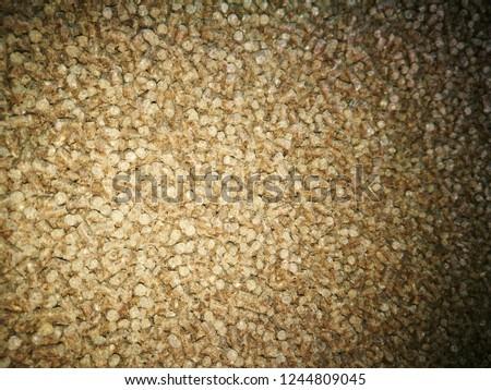 Pellets Biomass- close up studio shot. macro shot of energy efficient wood pellets fills frame. Wood pellets close up .Biofuels. Biomass Pellets - cheap energy. The cat litter