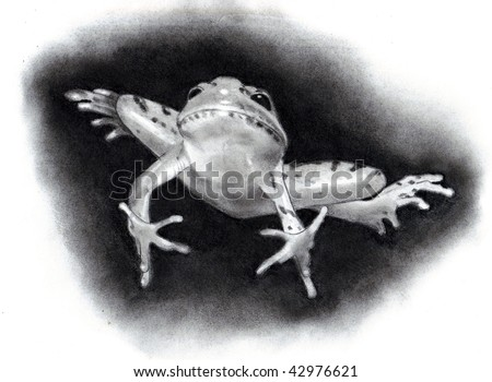 Pencil Drawing of Leaping Frog