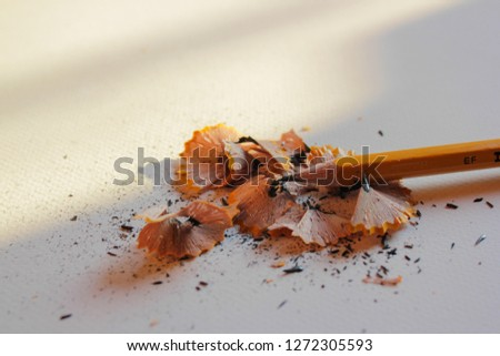 Pencil with pencil shavings