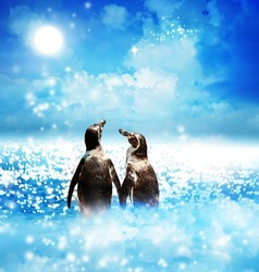 Penguin couple with a shooting star in the night fantasy landscape