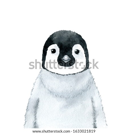 Penguin - watercolor illustration isolated on white background. Hand drawn emperor penguin baby character, front view. Black and white, monochrome portrait. Print for t-shirts, apparel, posters.