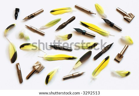 Pens and feathers on a white background