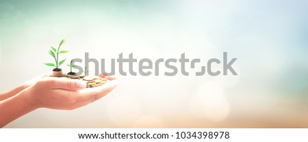 Pension fund concept: Human hands save holding stack of golden coin with small tree on blurred nature background