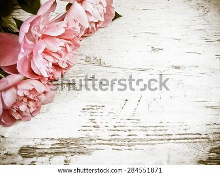 Peony flower #284551871