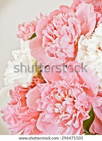 Peony flowers #296471501
