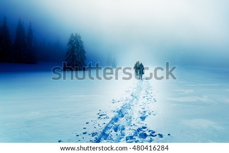 People alone in Winter blizard. Beautiful mountain snowy landscape #480416284