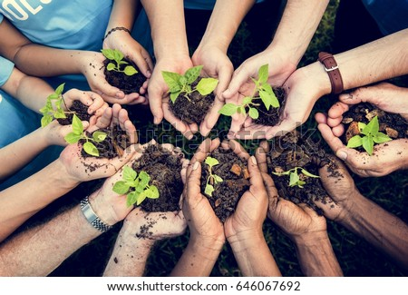 People Hands Cupping Plant Nurture Environmental #646067692