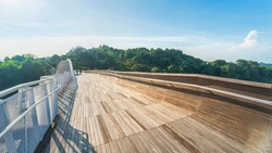 people in pedestrian walk at wooden bridge walkway over forest with trees and modern urban city.