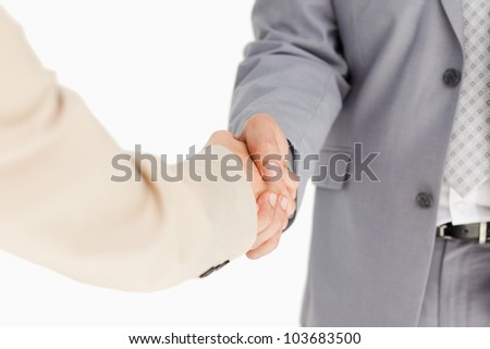 People in suit having an agreement against white background