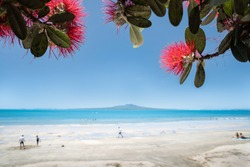 People playing and relaxing on the Takapuna beach with blooming red Pohutukawa flowers framing the Rangitoto Island in the distance