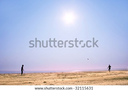 people playing  frisbee on the  sunshine beach