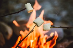 People roasting marshmallows around fireplace, enjoying their holiday