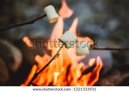 People roasting marshmallows around fireplace, enjoying their holiday