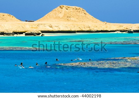 People snorkeling beside the island Giftun in the red sea