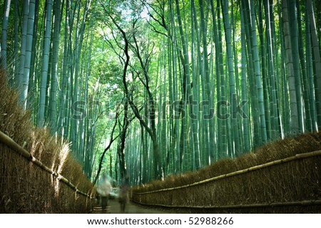 People strolling through the bamboo Forest in Arishayama, near Kyoto (intentional blurred motion)