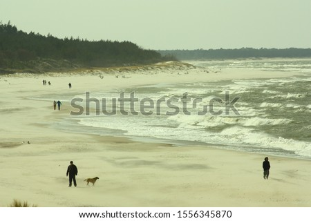 people walking along the seashore during windy weather