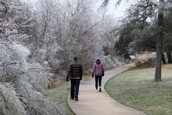 People walking on icy path through trees