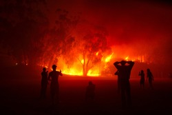 People watching forest fire in night. Shot in Stellenbosch, Western Cape, South Africa.