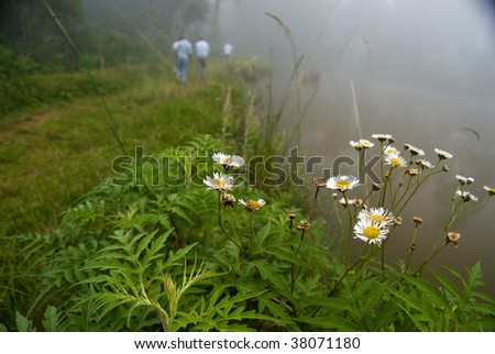 Peoples go on in the way with flowers and lake.