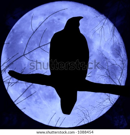 Perched night hawk silhouetted against a full moon.