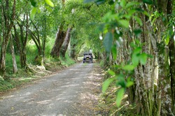 PEREIRA,COLOMBIA, MARCH 2012: Classic car on gravel road