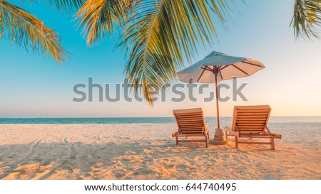 Shutterstock Perfect beach view. Summer holiday and vacation design. Inspirational tropical beach, palm trees and white sand. Tranquil scenery, relaxing beach, tropical landscape design. Moody landscape