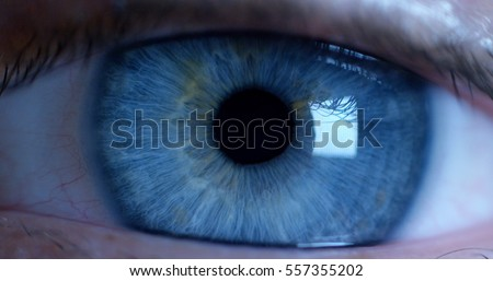 perfect blue eye macro in a sterile environment and perfect vision in resolution 6k,  concept, the vision of the future and healthy life concept. view precise and straight to the target. - Shutterstock ID 557355202