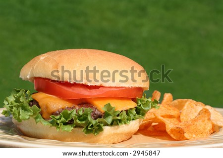 Perfect cheeseburger with chips, outside.