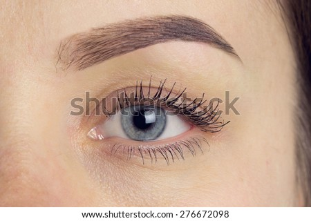 Perfect Eyebrow After Correction. Close-up macro photo of big opened eye, care and review of the eyes, light brown coloring, natural, perfect shape, procedure, nude make-up. Care, thin out, pull out.
