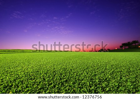 Perfect Golf Field with Cut Green Grass and sunset in the background