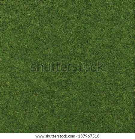 Perfect Grass   made in 3d software