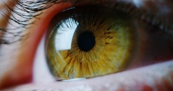 perfect green eye macro in a sterile environment and perfect vision in resolution 6k,  concept, the vision of the future and healthy life concept. view precise and straight to the target.