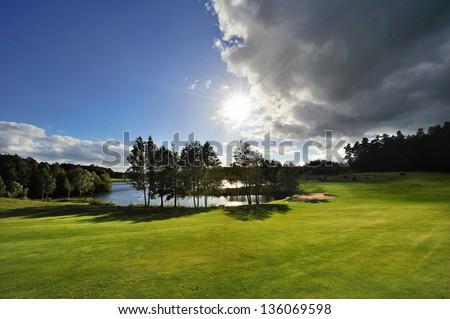 Perfect Green grass on a golf field Zdjęcia stock ©