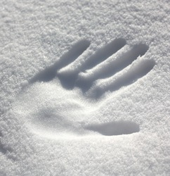 Perfect hand print in fresh snow