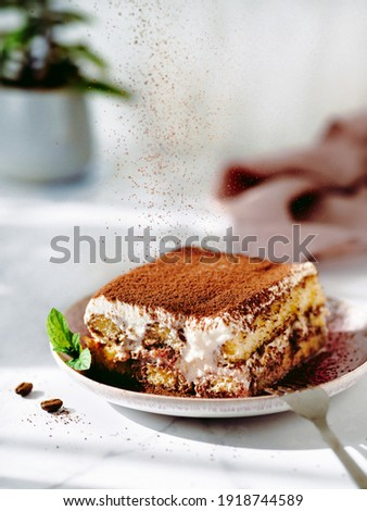 Perfect homemade tiramisu cake sprinkled with cocoa powder. Tiramisu portion on plate over white marble tabletop with green plant in pot on background. Delicious no bake tiramisu in natural daylight Photo stock ©