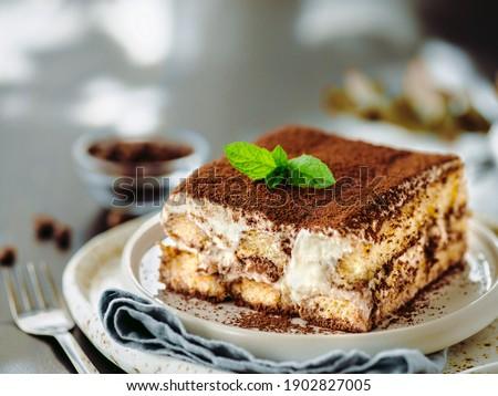 Perfect homemade tiramisu cake with fresh mint. Tiramisu portion on plate over gray background. Delicious no bake tiramisu ready-to-eat. Close up. Copy space Photo stock ©