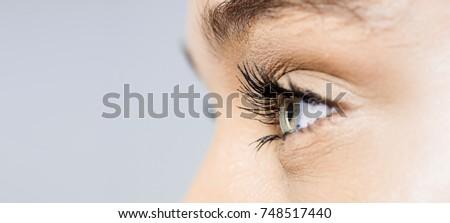 perfect macro shot of left side eye