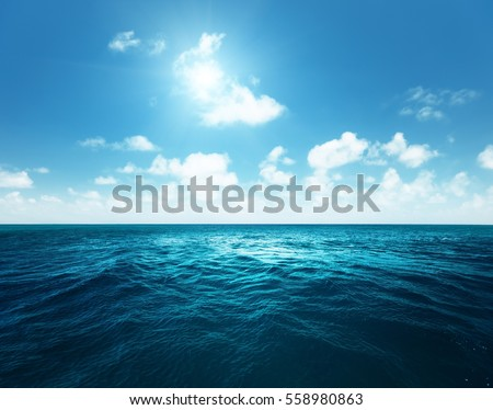 perfect sky and tropical ocean #558980863