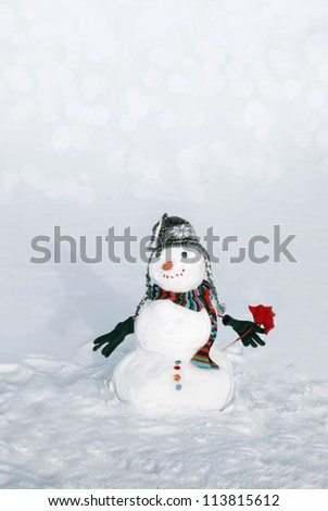 Perfect snowmen with flower and happy face